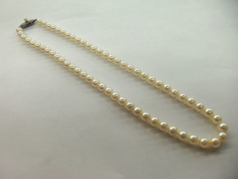 """14.5"""" PEARL CHOKER SILVER CLASP (65) 5MM PEARLS WITH NICE LUSTER"""