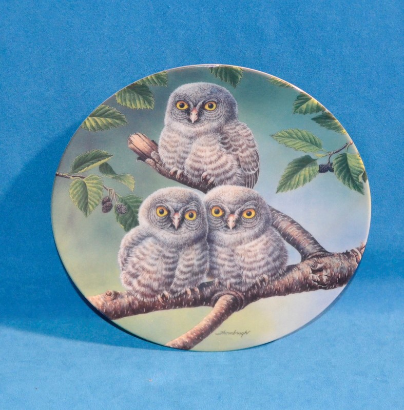 KNOWLES Collectible Plate/Figurine OUT ON A LIMB: GREAT GRAY OWLS