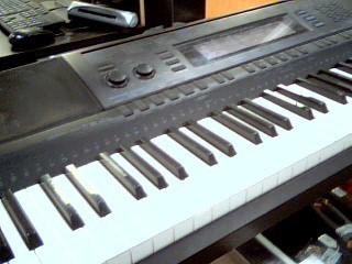 CASIO Piano/Organ WK500