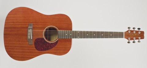 GUITARWORKS Electric-Acoustic Guitar S0-GWD-D10N