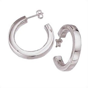 Silver Earrings 925 Silver 1dwt