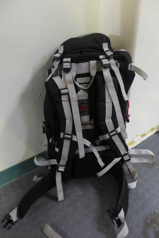 OZARK TRAIL Handbag BACKPACK