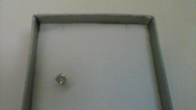 Gold-Diamond Earrings .10 CT. 10K White Gold 0.23g