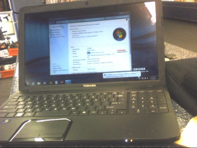 TOSHIBA Laptop/Netbook SATELLITE C855D