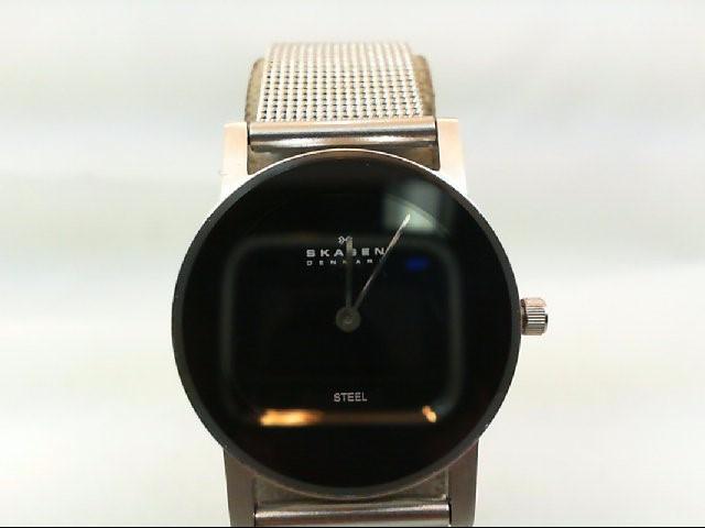 SKAGEN Lady's Wristwatch 39SSSB