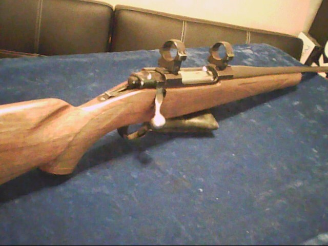 RUGER Rifle M-77