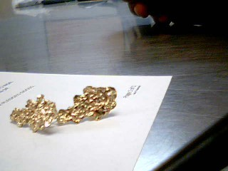 Gold Earrings 10K Yellow Gold 3.2g