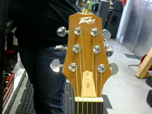 PEAVEY Acoustic Guitar DW-1