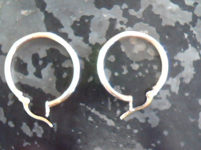 Gold Earrings 10K Yellow Gold 1.1dwt