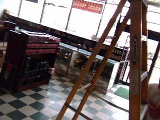 WERNER Ladder FS108
