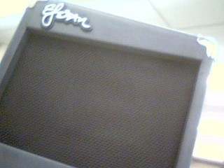 ESTEBAN Electric Guitar Amp G-10