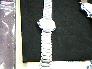 POLO CLUB Lady's Wristwatch ELDORADO