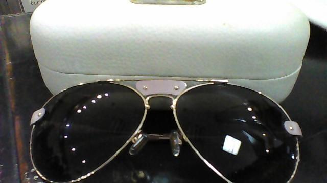 CHLOE Sunglasses CL2104