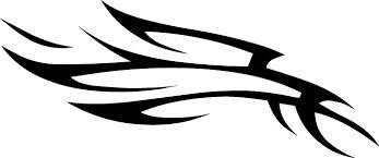 THUNDERBIRD BICYCLES