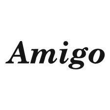 AMIGO GUITAR