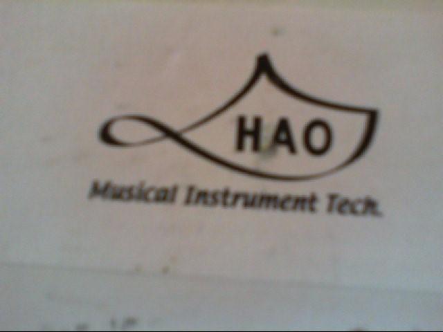 HAO MUSICAL INSTRUMENT TECH