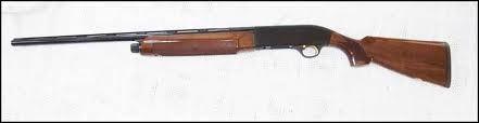 BERETTA Shotgun A-303