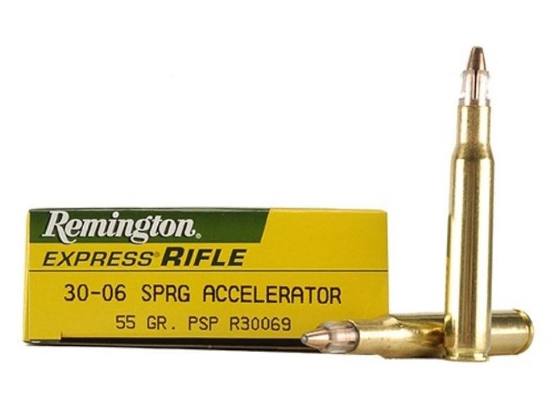 REMINGTON Ammunition R30069