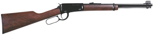 HENRY REPEATING ARMS Rifle LEVER ACTION .22 (H001)