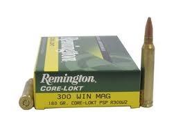 REMINGTON Ammunition R300W2