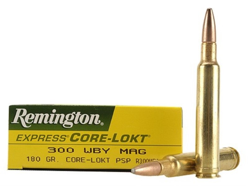 REMINGTON FIREARMS Ammunition 29279