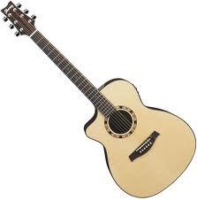 IBANEZ Acoustic Guitar A100ENT1201