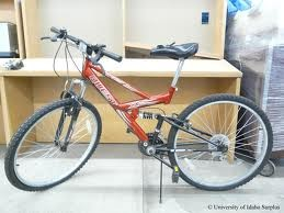 QUEST Mountain Bicycle X FIRE