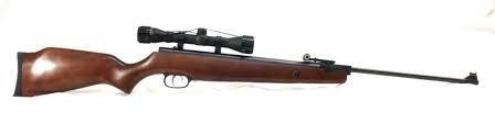 BEEMAN Air Gun/Pellet Gun/BB Gun SPORTSMAN RS2 SERIES
