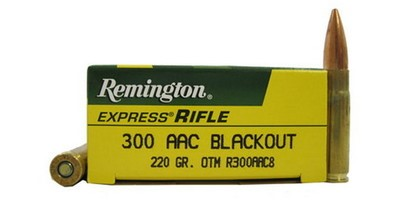 REMINGTON FIREARMS Ammunition R300AAC8