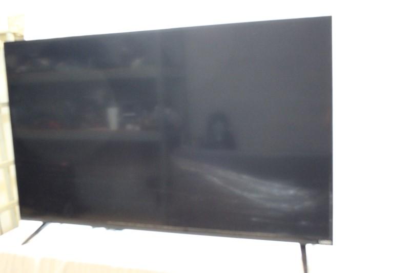 VIZIO Flat Panel Television D50U-D1