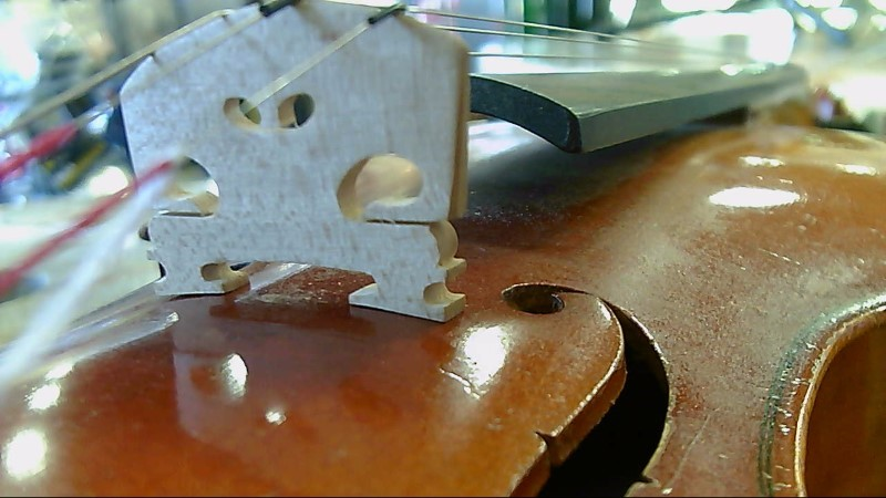 Suzuki Model 250 Violin