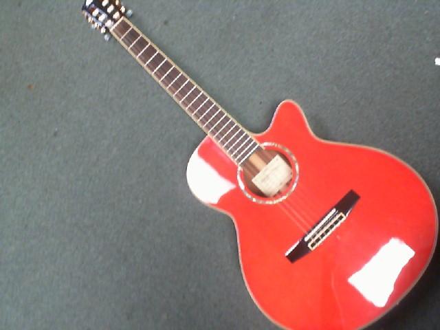 SALVADOR IBANEZ Acoustic Guitar AEG10NE-TNG-14-02