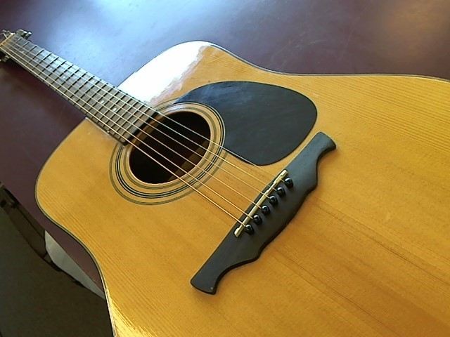 ALVAREZ Acoustic Guitar RD8