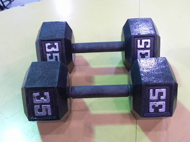 Exercise Equipment 35 LBS DUMBELL