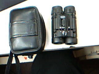 Tasco 8x21 Binoculars with case