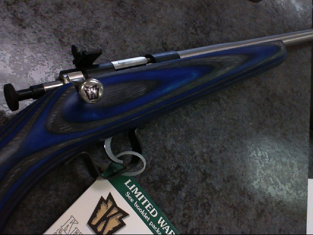 CRICKETT - 22 cal Blue Lam w/ Stainless Steel