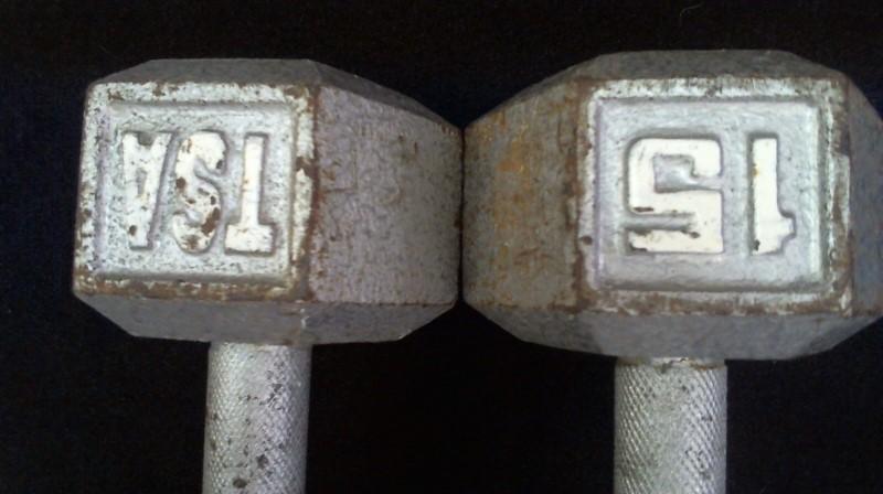 Exercise Equipment 15LBS DUMBBELLS