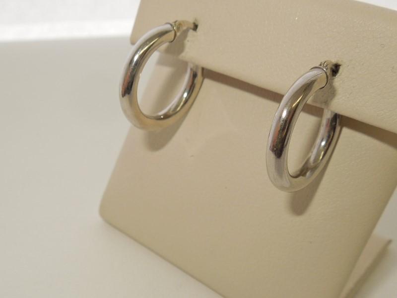 Gold Earrings 10K White Gold 1.1g