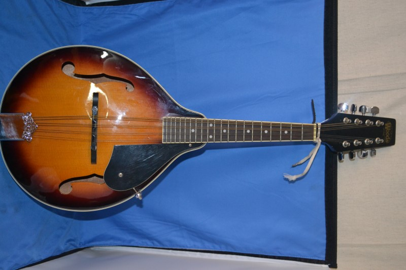 Woods Insturments Mandolin