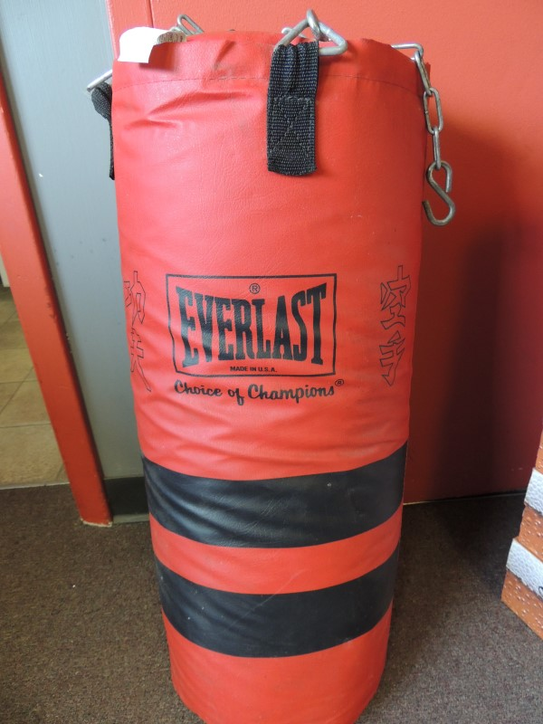 EVERLAST Indoor Sports PUNCHING BAG
