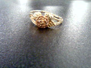 Lady's Gold Ring 10K Tri-color Gold 1.9g