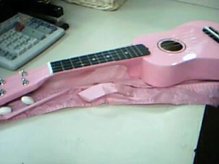 Diamond Head DU110 Soprano Ukulele with Gigbag.  Pink