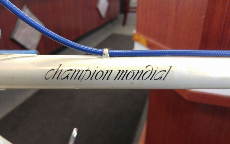 GAZELLE CHAMPION MONDIAL AB Frame Dura Ace