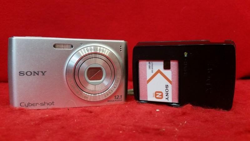 Sony Cyber-shot DSC-W510 12.1 MP Digital Camera - Silver