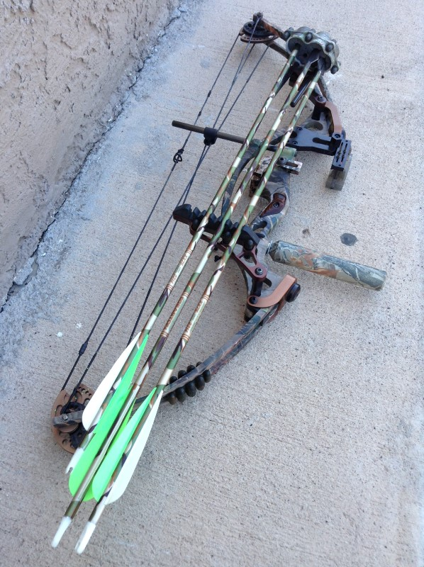 HOYT ARCHERY Bow RINTEC