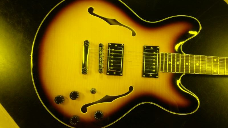 WASHBURN Electric Guitar OSCAR SCHMIDT DELTA KING OE30