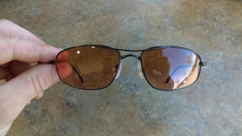 SERENGETI EYEWEAR Sunglasses 6691