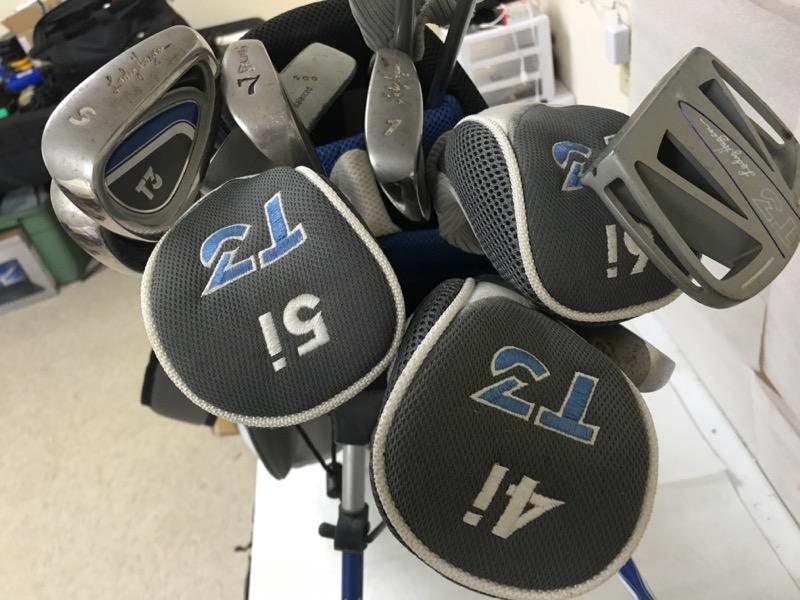 WALTER HAGEN Golf Club Set IMS2 LADY HAGEN CLUBS
