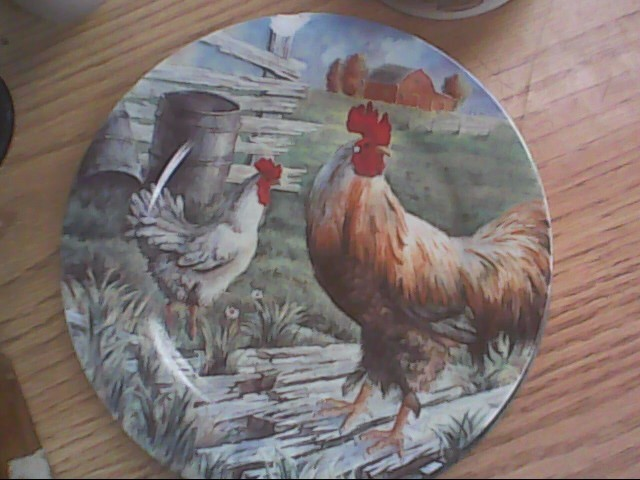 2 rooster plate