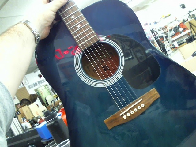 INDIANA GUITAR COMPANY Acoustic Guitar SCOUT BLS